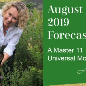 August 2019 Monthly Forecast - Master 11/2 energy! What Do YOU Want?!