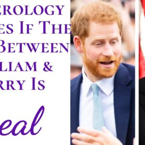 Numerology EXPOSES If The Feud Between Prince William And Prince Harry Is Real & If They Get Along