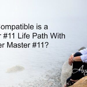 How Compatible is a Master #11 With Another Master 11?