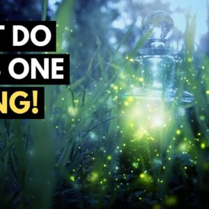 The ONE Missing Key To Create Powerful Spiritual Transformation