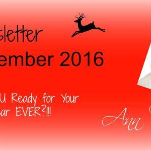 Viewsletter December 2016 - Seasonal Special! Highlights of 2017