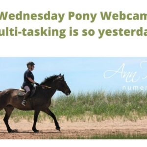 Wednesday Pony Webcam Day - Stop Multi Tasking!