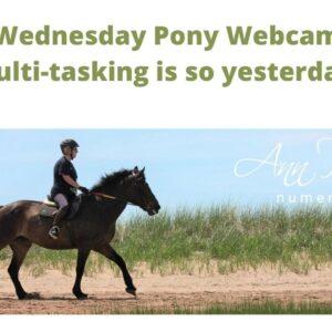 Wednesday Pony Webcam Day - Stop Multi Tasking!
