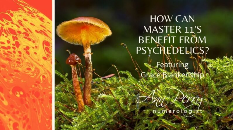 How Can Master 11's Benefit From Using Psychedelics?